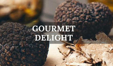 gourmet delight